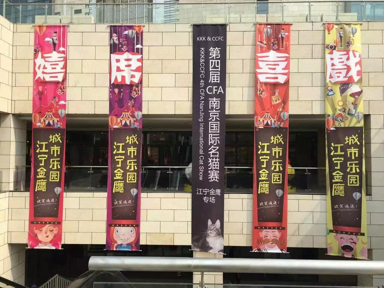 第四届CFA南京国际名猫赛配图6